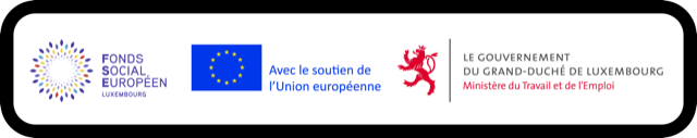 This image has an empty alt attribute; its file name is FSE-EU-MdEmploi-black-outline.png